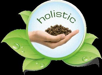 Belcando-Holistic-Logo4