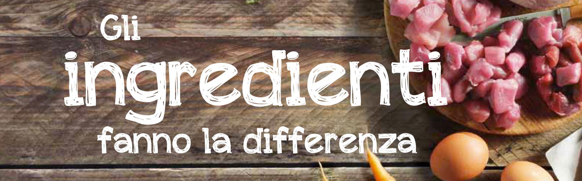 belcando italia, alimenti per cani olistici e cruelty free