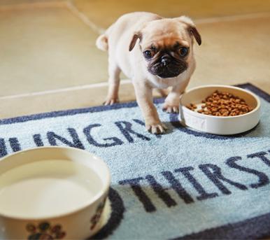 tappeti per cani sotto ciotola