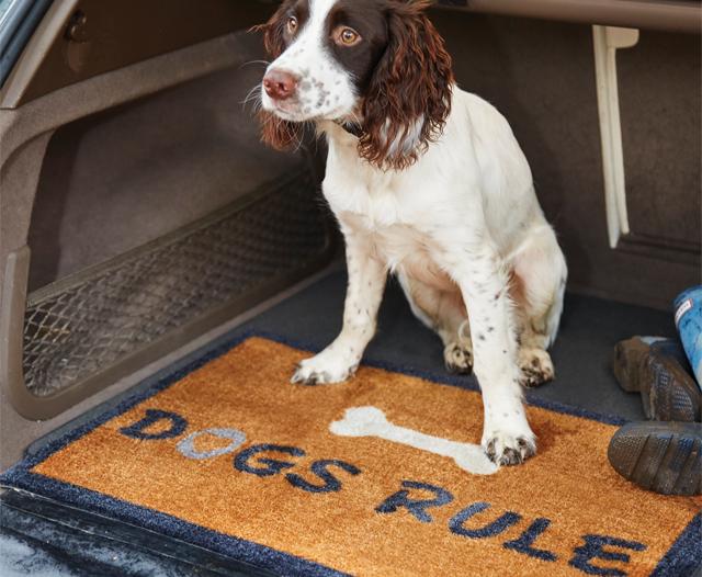 Pavimento In Gomma Per Box Cani : Tappeto per cani dogs rule