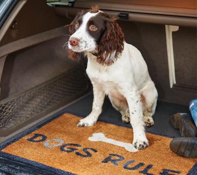 Tappeti per cani per macchina